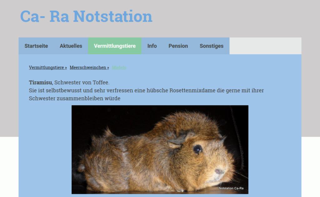 ca-ra-notstation.png