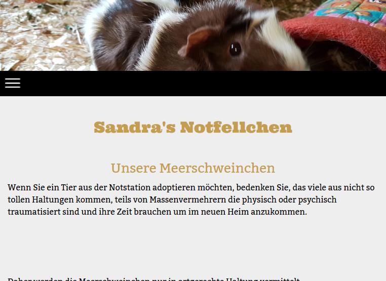 sandras-notfellchen.png