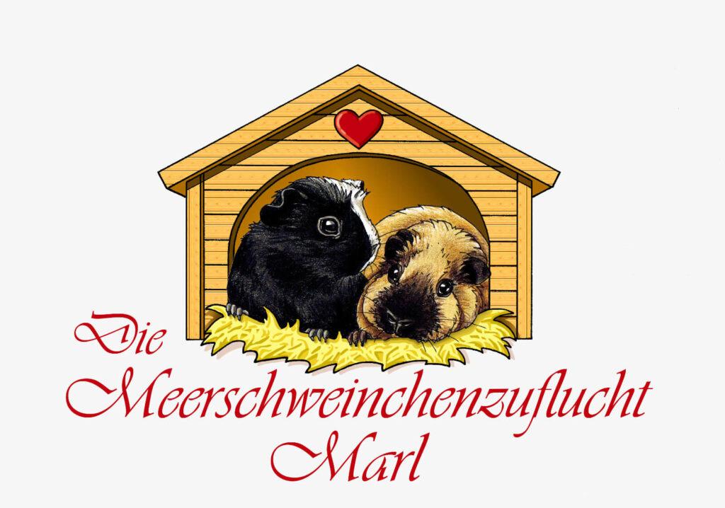 meerschweinchenzuflucht-marl-1.jpg