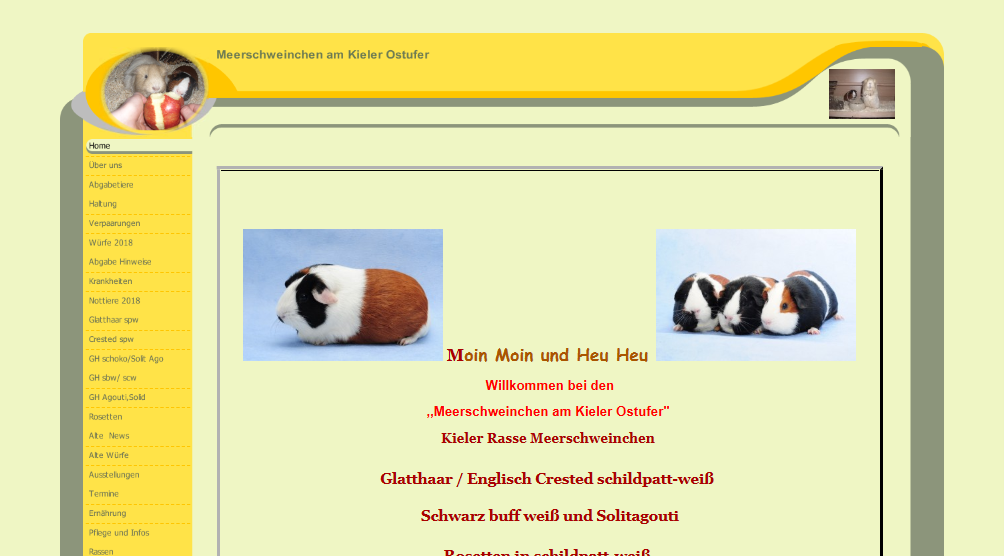 meerschweinchen-am-kieler-ostufer.png