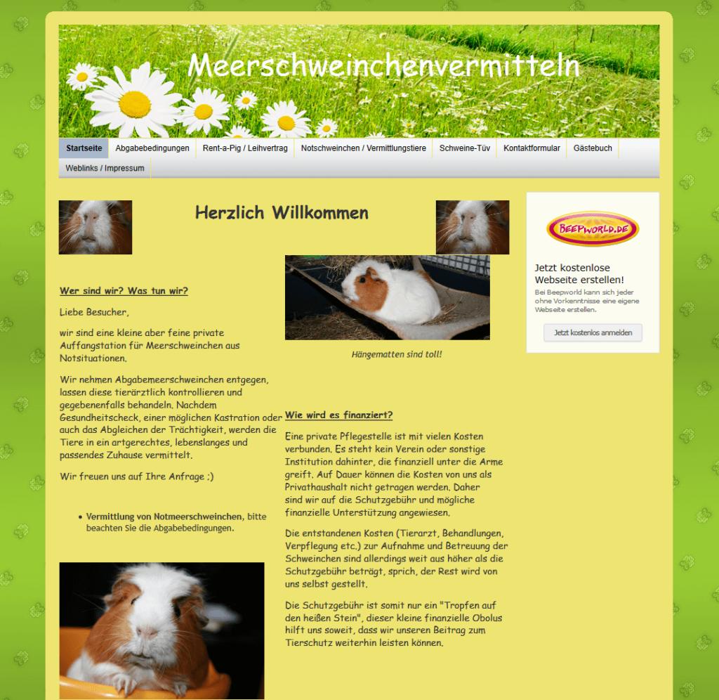 meerschweinchenvermittlung-bad-schalbach.png