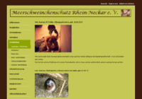 meerschweinchenschutz-rhein-neckar-e-v.png