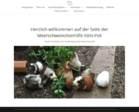 meerschweinchenhilfe-koeln-poll.png