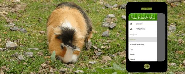 Mein Futterlexikon: Wiese und Kräuter sammeln mit Hilfe einer App