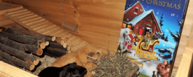 Leckerlis zum Fest: Der Meerschweinchen Adventskalender von JR-Farm