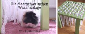 Die Meerschweinchen-Waschanlage: DIY Bauanleitung mit Infografik