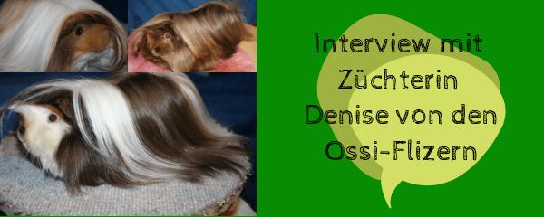 Interview mit Züchterin Denise von den Ossi-Flizern